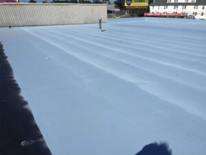 trimmaster-temple-pa-roof-coating-system-3